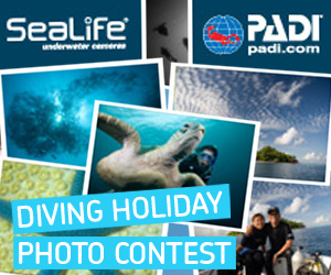 Diving Holiday Photo Contest