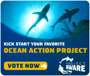 Ocean Action Project