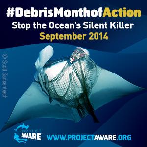 dive against debris month of action