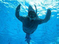 Saving the Sharks - Project Aware Finathon