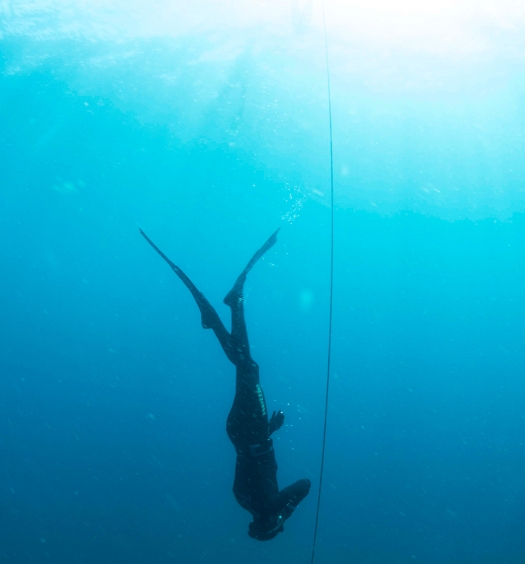 PADI Freediver Descending Open Water