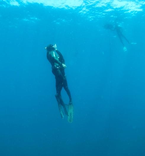 PADI Freediver Rescue Open Water