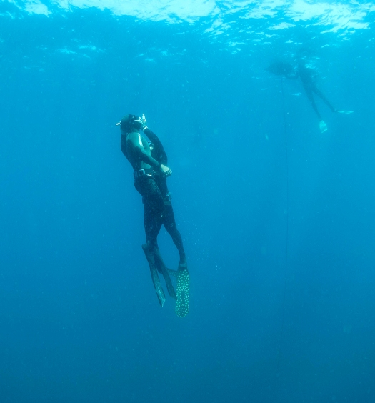PADI Freediver Rescue Open Water