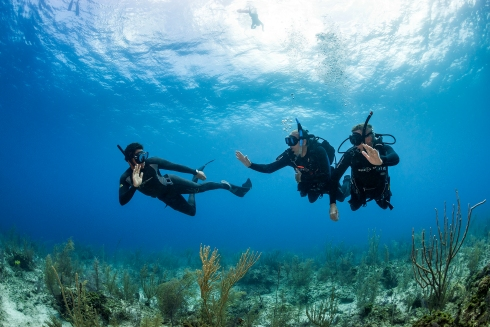 Diving with a buddy is one the golden rules in both Scuba & Freediving which should NEVER be broken!