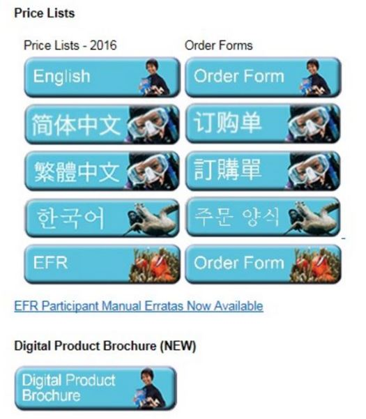 digital-product-brochure