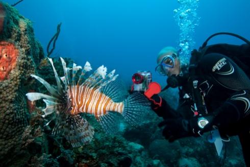 Digital Underwater Photoghaphy