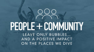 four-pillars-community