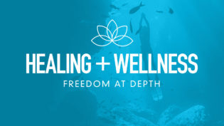 four-pillars-health-wellness