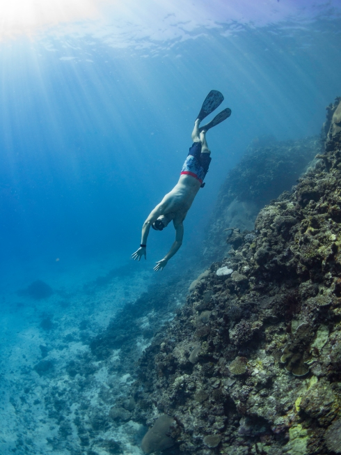 Freediving in the reef